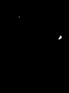 Pulp 1